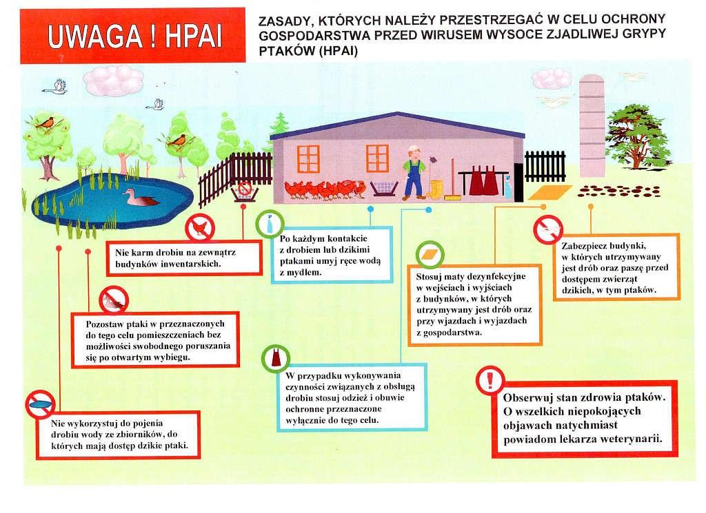 HPAI-info