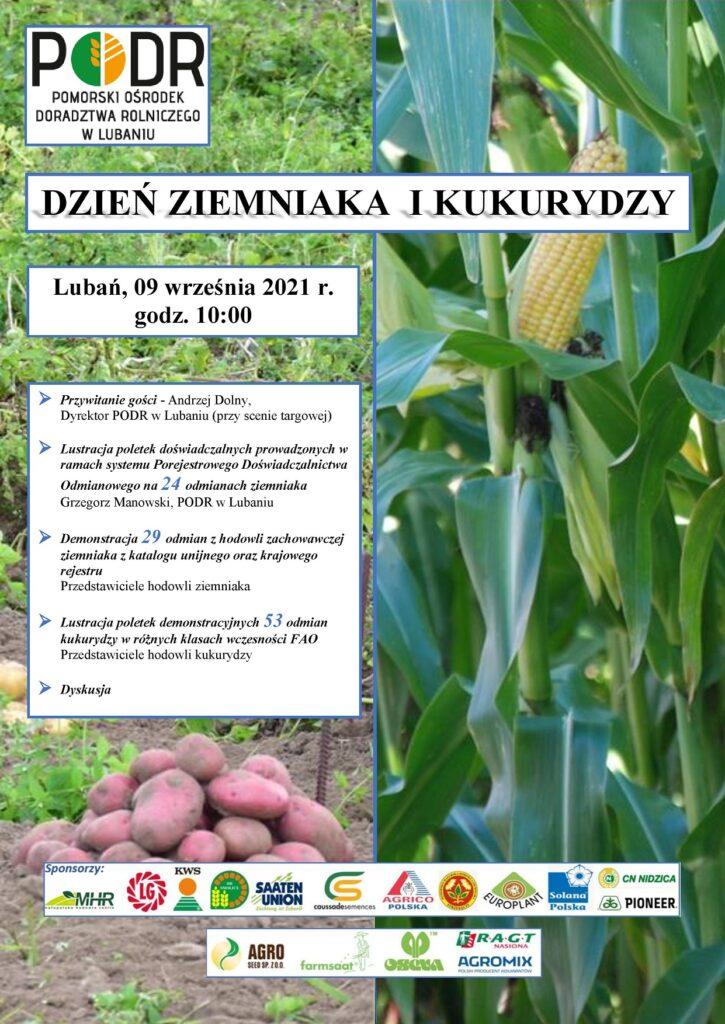 Dzień ziemniaka i kukurydzy - Lubań - plakat