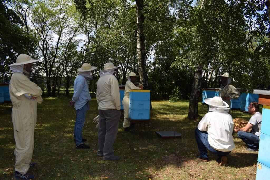 Pszczelarze przy ulach
