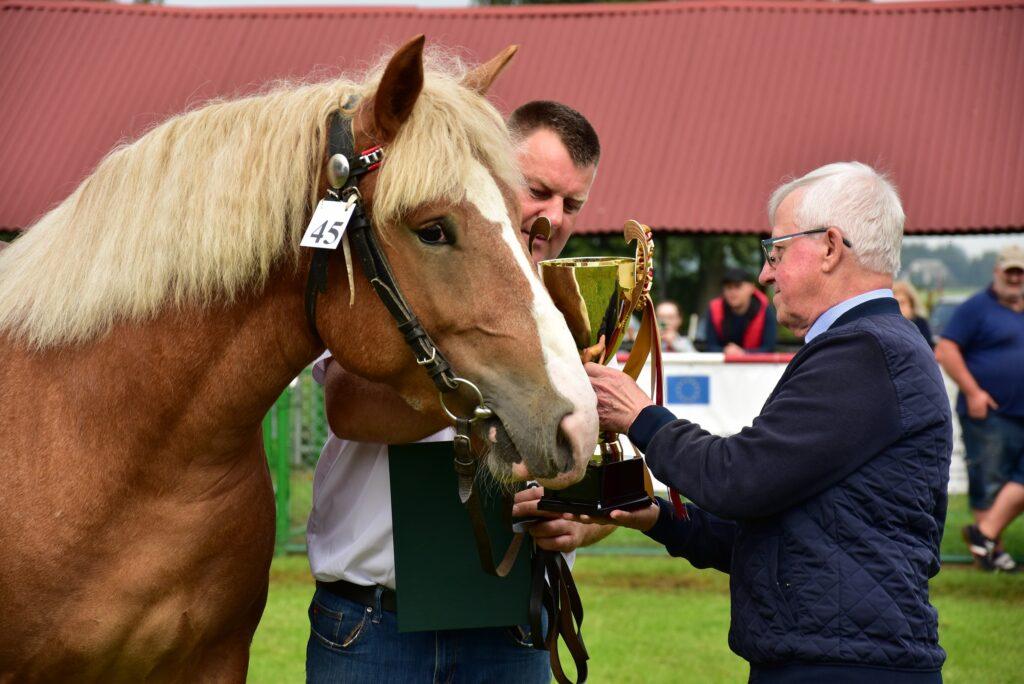 nagradzanie hodowcy koni