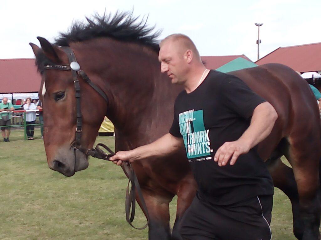 koń i hodowca