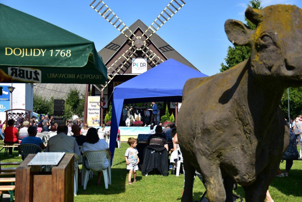 Pomnik krowy czempionki i jej młodsza wersja na scenie