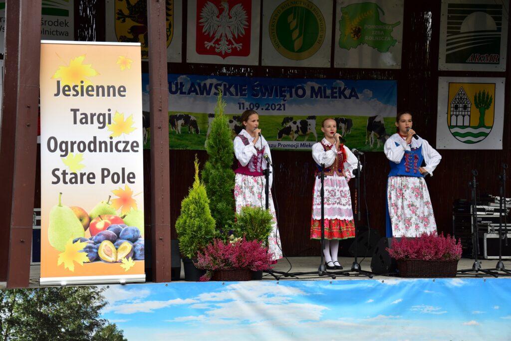 Występ Zespołu Pieśni i Tańca _Małe Żuławy_ ze Starego Pola 01