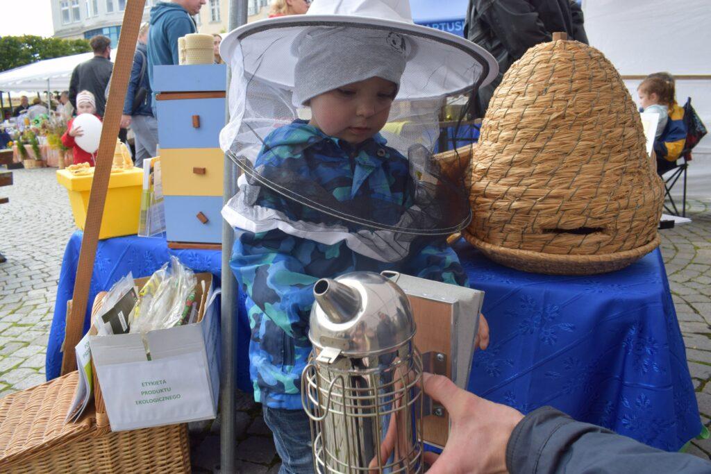 zainteresowanie pszczelarstwem