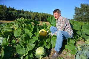Uprawa warzyw na wale permakulturowym w gospodarstwie Pana Zbigniewa Hendrich